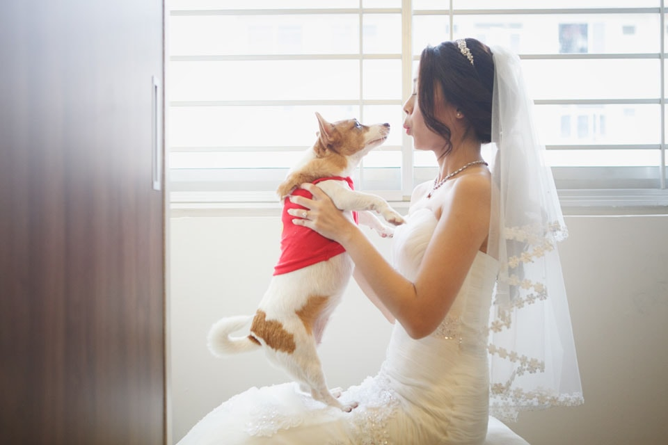 Evening Dresses Wedding Gowns Wedding Photography Singapore